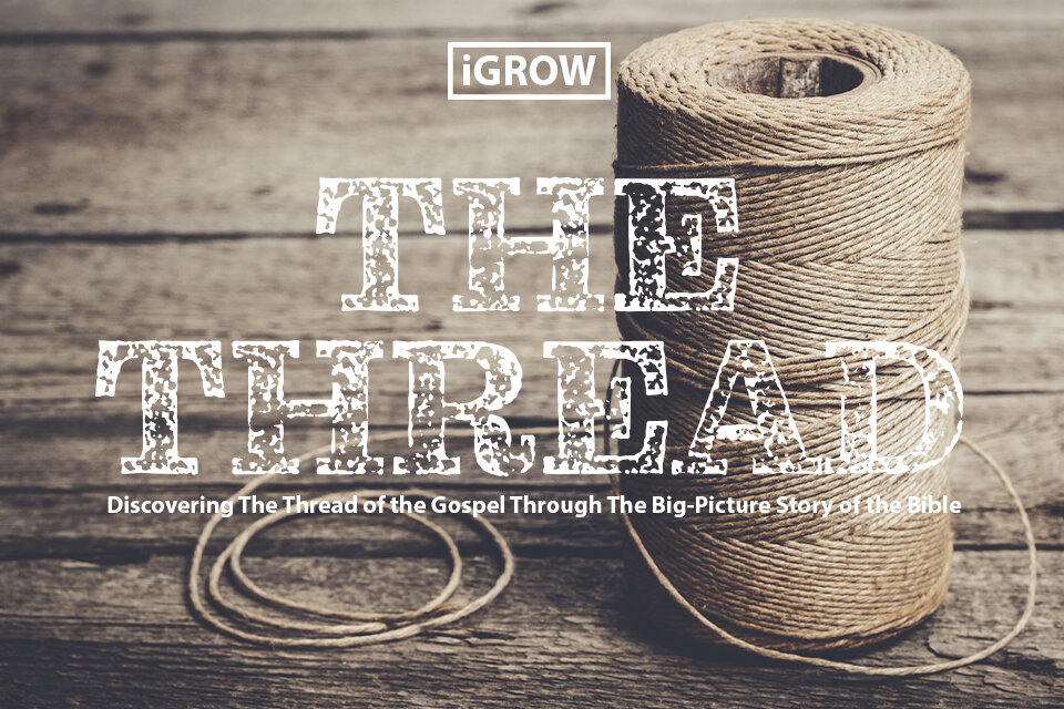 the thread web image